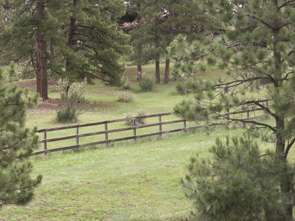 What you should know when buying rural property