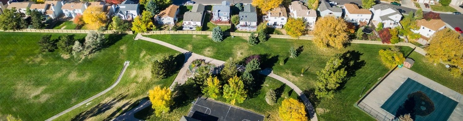 Traditions in Aurora Real Estate