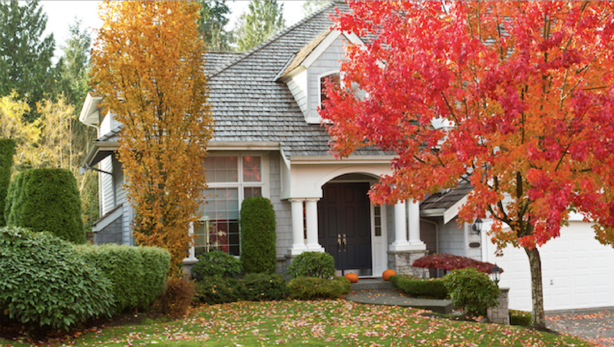 Are you ready to buy a home? This is the best time to do it